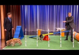 Conan Features Will Ferrel And His Dog Packs Agility