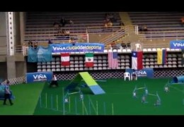 2012 AKC Dog Agility Nationals Highlights