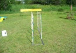 Teaching Weave Poles With Angled and Channel Weaves