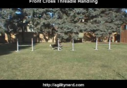Front Cross Threadle Handling – Same Side
