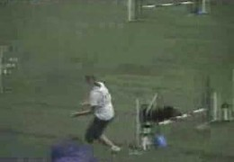2006 Dog Agility World Championship Bloopers