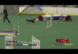 AKC Agility World Team Qualifier Tryouts
