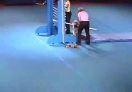 Another SUPERDOGS Show With Lots of Agility From 2006
