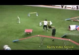 Brazil Team Winning Agility Run of The 2008 World Championship