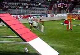 This 2007 World Championship Team Course Run By Silvia Trkman Has The Table