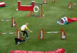 Check Out Silas Boogk and His Dog Fly Through This Agility Course