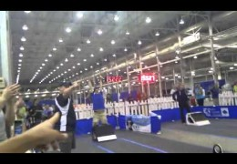 Flyball World Record Tie By Springloaded Is AMAZING