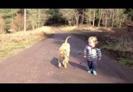 Dogs and Kids The Main Ingredients Of Pure Love