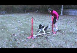 How Silvia Trkman Teaches Jump Wrap Handling