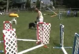 Susan Salo Jumping Clinic