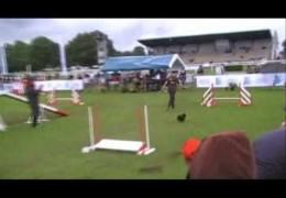 2007 France Dog Agility Grand Prix Final