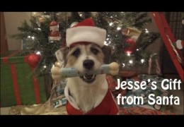 Santa's Gift to Jesse Wasn't the Perfect Gift at All
