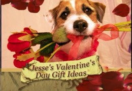 Safe Valentine's Day Treat for Your Dog