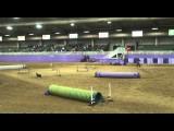 Amanda & Try at the 2013 NADAC Championships