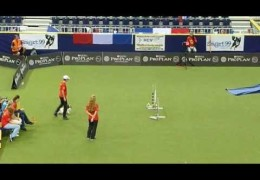 This Papillon Crushes the 2012 Dog Agility World Championships