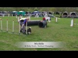 Living for Agility Speaks of all Dog Agility is to us