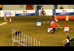 Finesse Makes Dog Agility Look Easy with this Championship Run