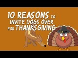 Top 10 Reasons You Should Invite Dogs to Thanksgiving