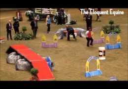 Horse and Dog Agility Relay with a Zoomies End