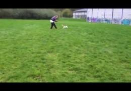 Michelle & Lulu's Amazing Dog Agility Transformation