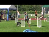 Dog Agility Team Work That Will Leave You Speechless