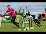 Five Ways to Handle the S-Line in Dog Agility Courses
