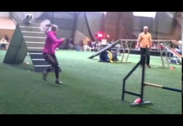 These Dog Agility Teams take on the Holmberg Double