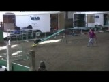 Delta and Flash ace the Advanced Pairs Dog Agility Relay