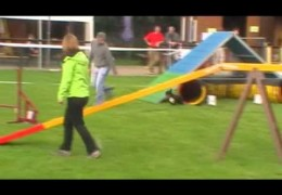 This French Bulldog Excels in Dog Agility