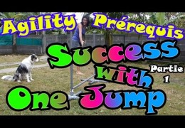 What You Can do With One Dog Agility Jump