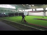 Dog Agility 2on 2off Training with Michael & Fertique