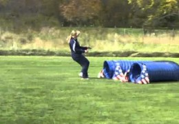 Great Demonstration of Dog Agility Striding