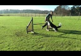 Dave Munnings and Backside Jump Handling