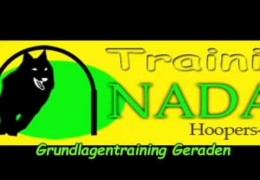 Amazing NADAC Hoopers Training Examples