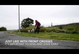 Urban Dog Agility Working Front Crosses & Turns