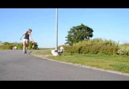 Urban Dog Agility Working Wraps and Full Turns