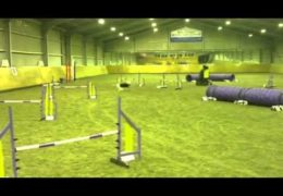 Philippa and Boogie Crushing Dog Agility Steeplechase