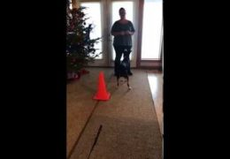 Amanda Nelson Discusses Cones for Distance Work