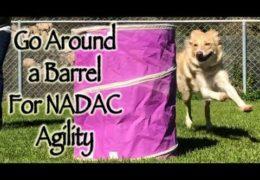 Shadow Handling Using NADAC Barrels