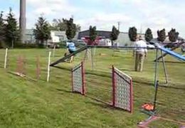 Amazing Dog Agility Briard Crushes this Course