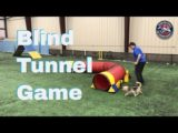 Blind Tunnel Game
