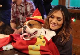 Behind the Scenes – Santa's Dog Eleves