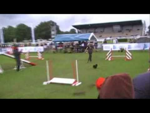 2007 France Dog Agility Grand Prix Final
