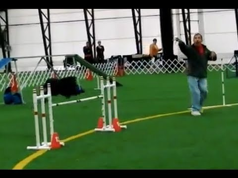 Ron Heller and Danni Are Dog Agility Poetry in Motion