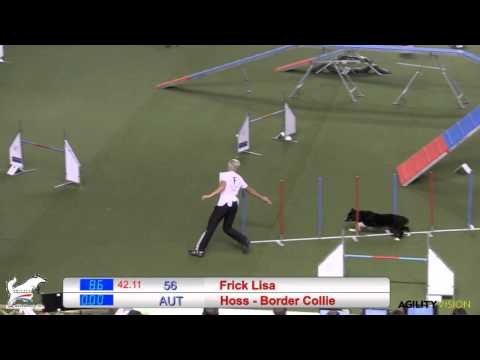 Pure Perfection By Lisa and Hoss 2014 FCI Finals Run