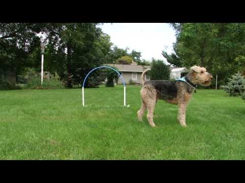 Improving Distance Handling With a Hoop
