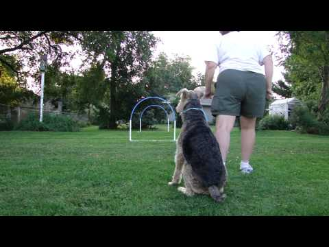 Improving Distance Handling With a Hoop Part 2