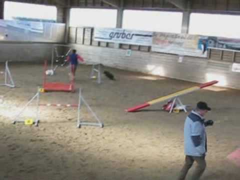 Agility Bloopers Croatian Sheepdog Style